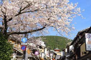 関西の風景 京都市東山 春の清水坂と町並みの写真素材 [FYI04901943]