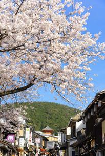 関西の風景 京都市東山 春の清水坂と町並みの写真素材 [FYI04901944]