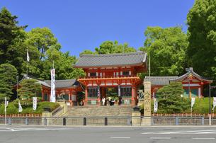 関西の風景 京都市 八坂神社の写真素材 [FYI04902059]
