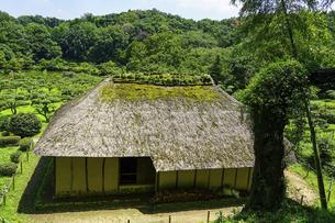 旧永井家住宅、薬師池公園の古民家と梅林(東京都町田市)の写真素材 [FYI04902087]