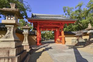 関西の風景 西宮市 西宮神社の赤門の写真素材 [FYI04902092]