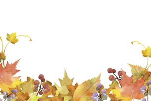 秋の落ち葉デコレーション 水彩イラストのイラスト素材 [FYI04902272]