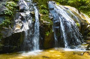 金引の滝の写真素材 [FYI04902292]