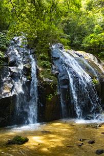 金引の滝の写真素材 [FYI04902294]