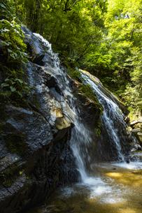 金引の滝の写真素材 [FYI04902295]