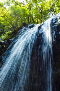金引の滝の写真素材 [FYI04902302]