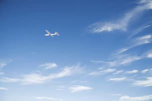 広い青空を飛ぶ紙飛行機の写真素材 [FYI04902352]