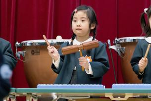 学芸会で楽器を演奏する女の子の写真素材 [FYI04902353]