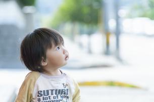 見上げる男の子の写真素材 [FYI04902381]