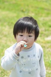 シャボン玉を吹く男の子の写真素材 [FYI04902469]