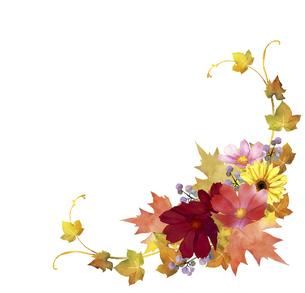 秋の花と紅葉のブーケのイラスト素材 [FYI04902700]