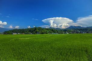 夏雲の写真素材 [FYI04902862]