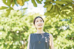 緑の中でリラックスする若い女性の写真素材 [FYI04902929]