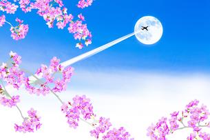 桜と飛行機雲のイラスト素材 [FYI04903429]