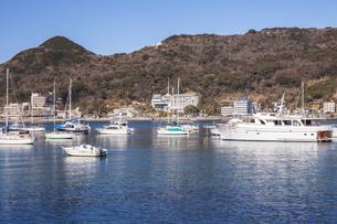 下田港のヨットと寝姿山の写真素材 [FYI04903774]