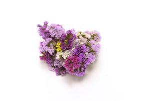 スターチスの花束の写真素材 [FYI04903923]