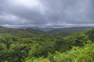 奄美大島の風景の写真素材 [FYI04904278]