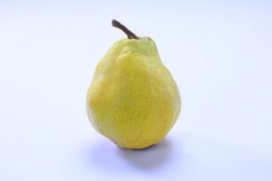 秋のフルーツのル・レクチェの写真素材 [FYI04904300]