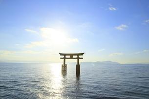 朝の白髭神社の湖中大鳥居の写真素材 [FYI04904313]