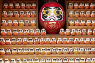 観音寺 だるま堂の写真素材 [FYI04904320]
