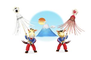 富士山をバックに纏いを見せる午の兄弟の写真素材 [FYI04904369]