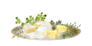 チーズとハーブの水彩画のイラスト素材 [FYI04904416]