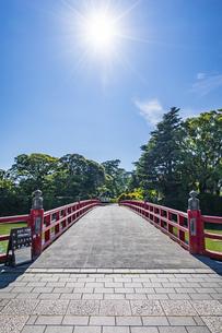 小田原城址公園の堀に架かる学橋と太陽の写真素材 [FYI04904456]