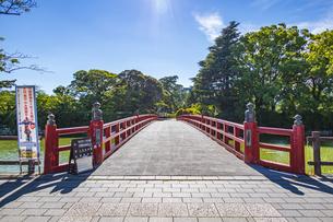 小田原城址公園の堀に架かる学橋の写真素材 [FYI04904459]