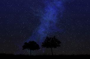 星空に草原と木のシルエットのイラスト素材 [FYI04904592]