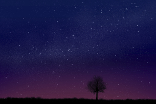 星空に草原と木のシルエットのイラスト素材 [FYI04904593]