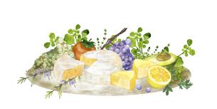 チーズとフルーツの水彩画のイラスト素材 [FYI04904694]