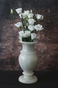 大理石模様背景のトルコキキョウの花束の写真素材 [FYI04905181]