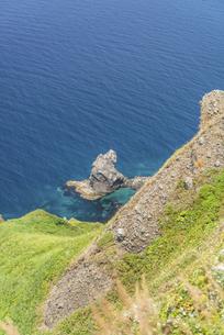 夏の青い海に浮かぶ「猫」~北海道礼文島~の写真素材 [FYI04905190]
