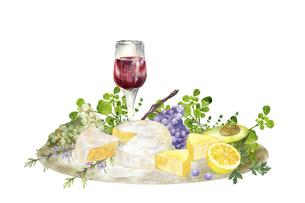 赤ワインとチーズとフルーツ 水彩イラストのイラスト素材 [FYI04905211]