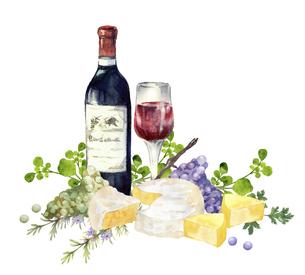 赤ワインとチーズと葡萄 水彩イラストのイラスト素材 [FYI04905212]
