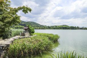 観音島の祠を見る広沢池の写真素材 [FYI04905321]