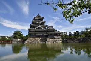 松本城の写真素材 [FYI04905353]