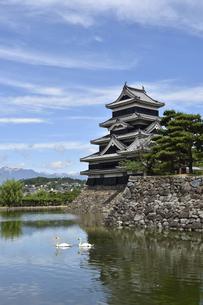 松本城の写真素材 [FYI04905355]