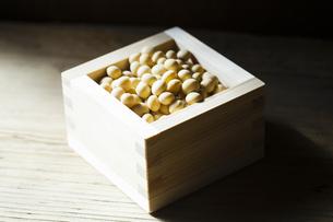 大豆の写真素材 [FYI04905421]