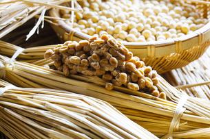 藁納豆と大豆の写真素材 [FYI04905562]