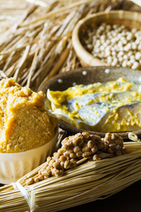 発酵食品の写真素材 [FYI04905575]
