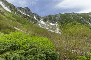 新緑の千畳敷カールと宝剣岳の写真素材 [FYI04905805]