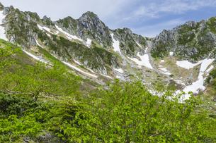 新緑の千畳敷カールと宝剣岳の写真素材 [FYI04905811]
