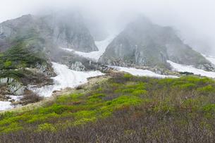 稜線に霧がかかる残雪と新緑始まる千畳敷カールと宝剣岳の岩肌の写真素材 [FYI04905853]