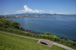 立待岬からの函館市街の写真素材 [FYI04905909]