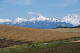 冠雪の十勝岳連峰の写真素材 [FYI04906016]