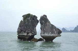 ハロン湾 闘鶏岩の写真素材 [FYI04906304]