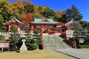 紅葉の織姫神社の写真素材 [FYI04906399]