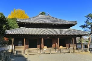 足利学校の孔子廟の写真素材 [FYI04906421]