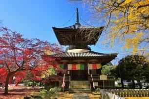 鑁阿寺(ばんなじ)の多宝塔と紅葉の写真素材 [FYI04906430]
